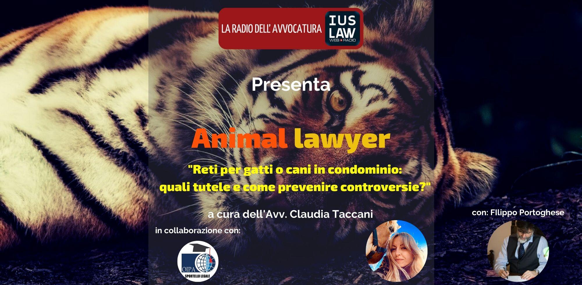 Rete Per Gatti Condominio animal lawyer - reti per gatti o cani in condominio: quali